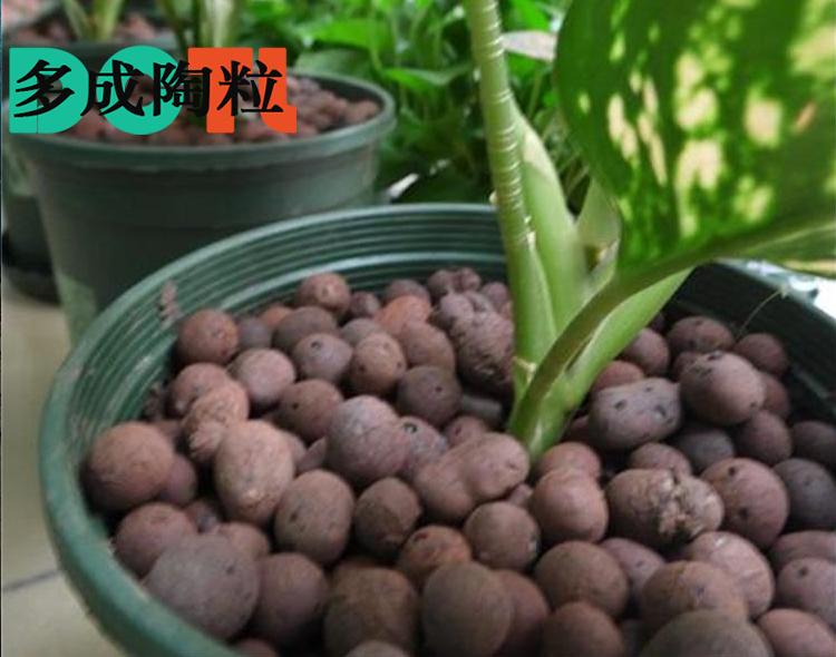 园艺花卉陶粒