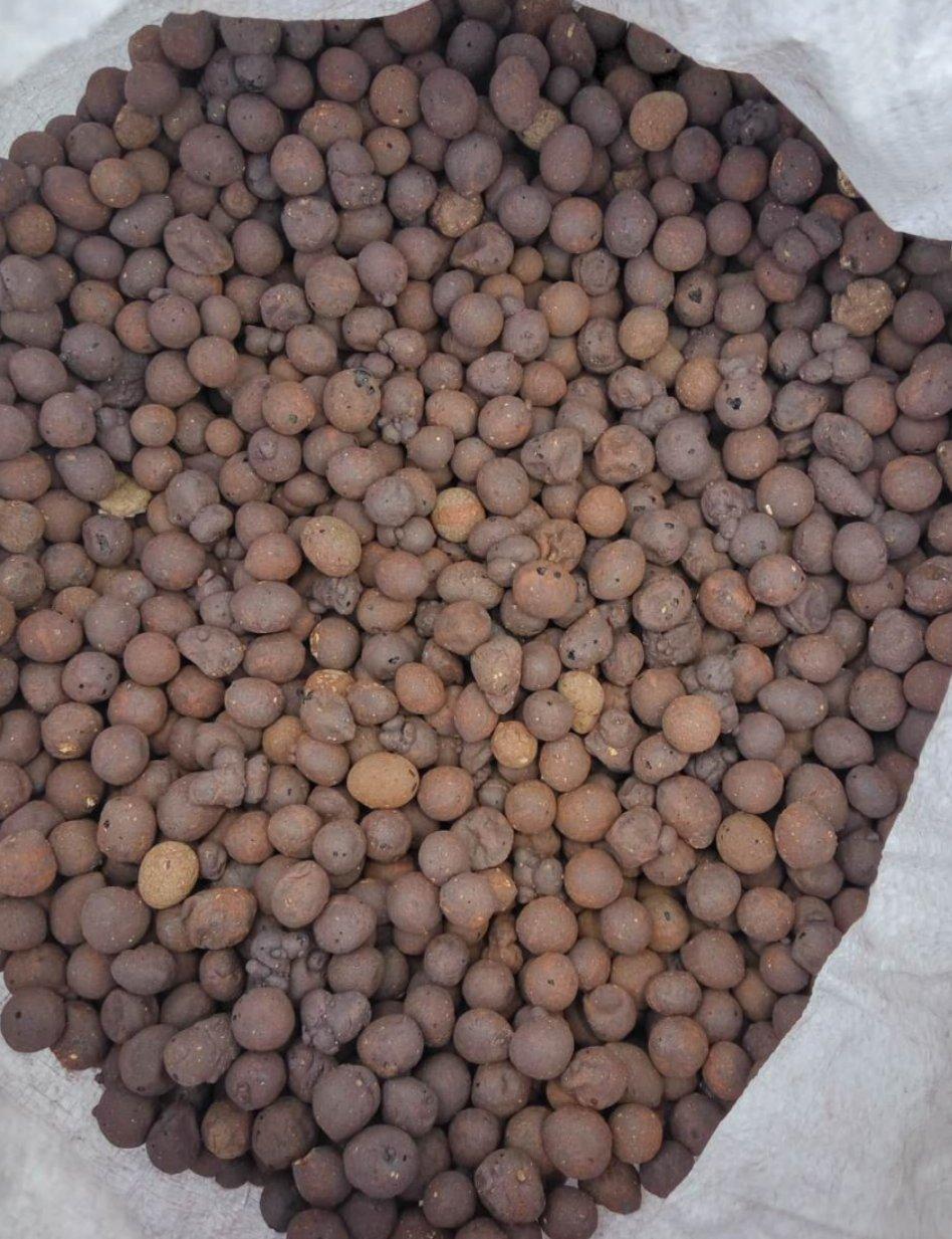 园林花卉陶粒